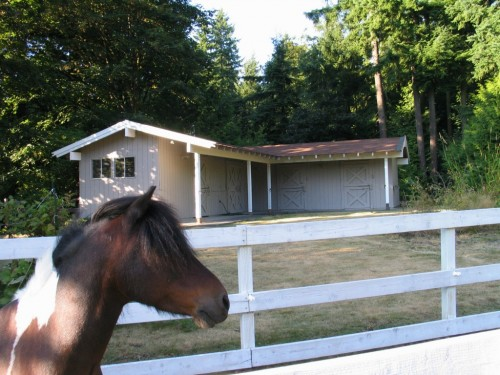 Real Actual Listing Photos: Pretty Pretty Ponies Edition